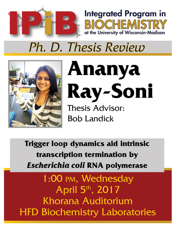 Promo poster for Ray-Soni Thesis Review