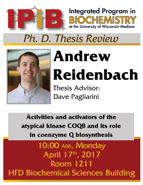 Poster for Reidenbach Thesis Review