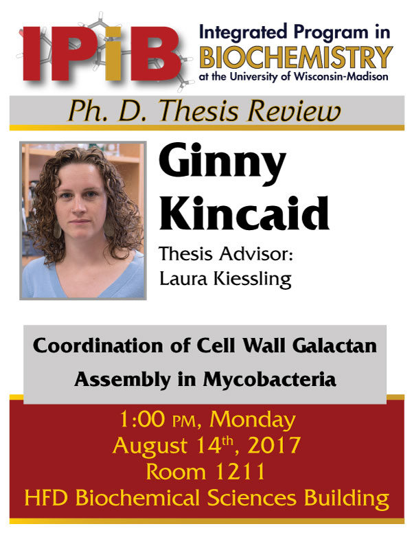Poster for Kincaid thesis review