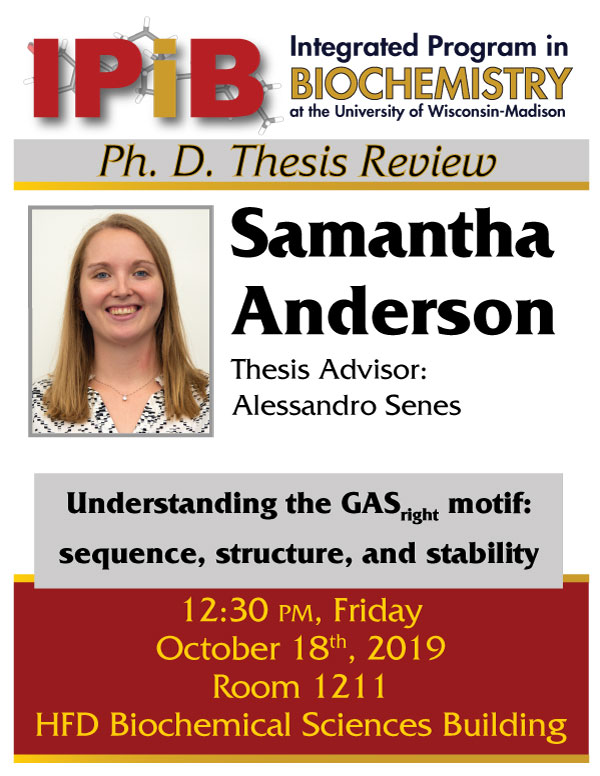 Poster for Sam Anderson Thesis Review
