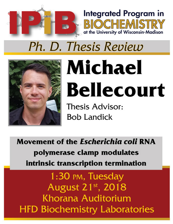 Poster for Michael Bellecourt thesis review