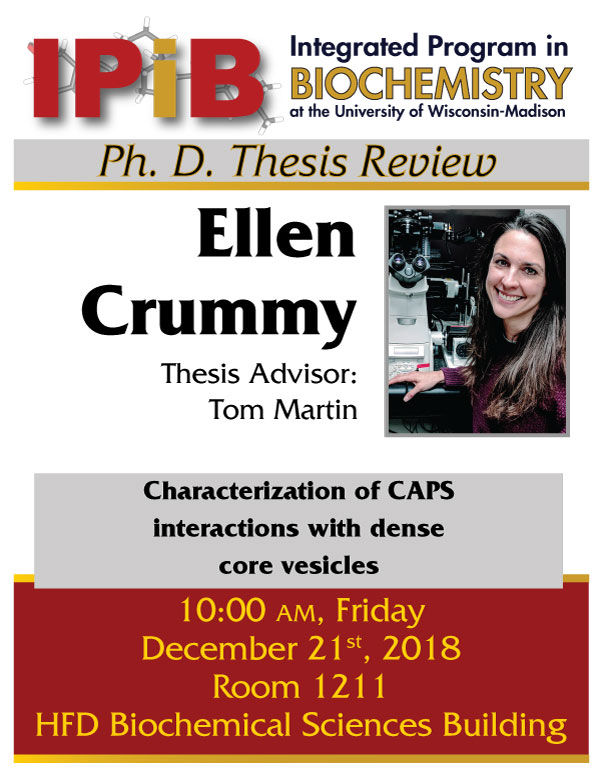 Crummy thesis review poster