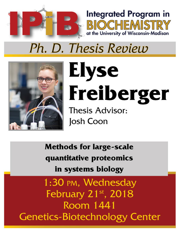 Poster for Elyse Freiberger thesis review