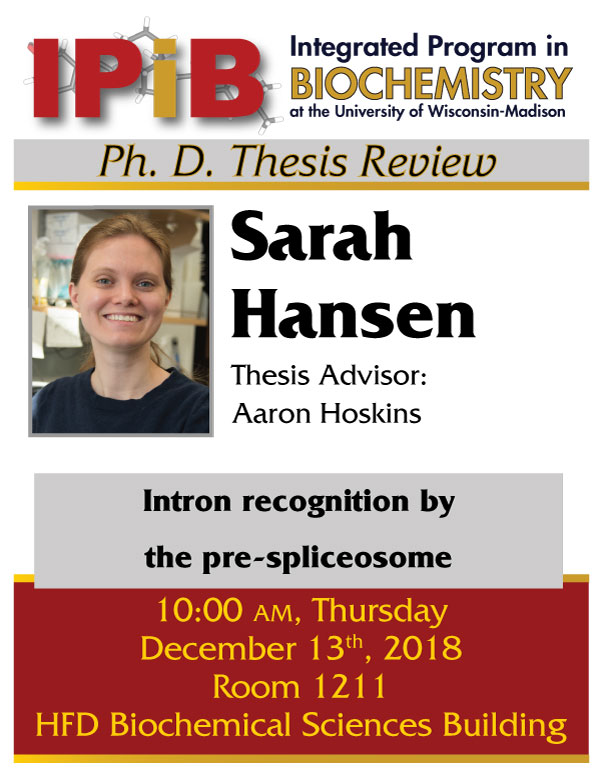 Poster for Sarah Hansen thesis review