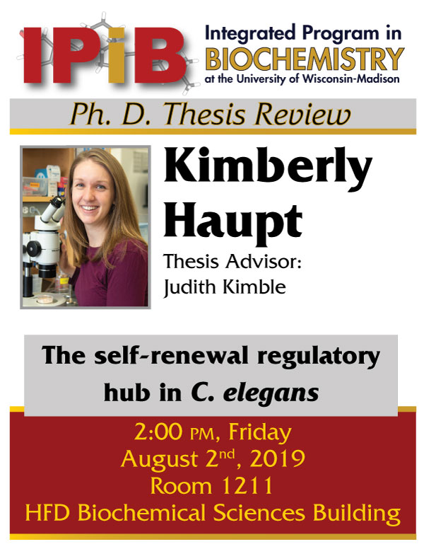 Poster for Kim Haupt thesis review