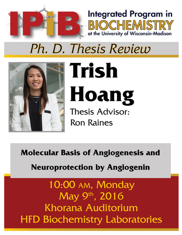 Thesis review flyer for Trish Hoang