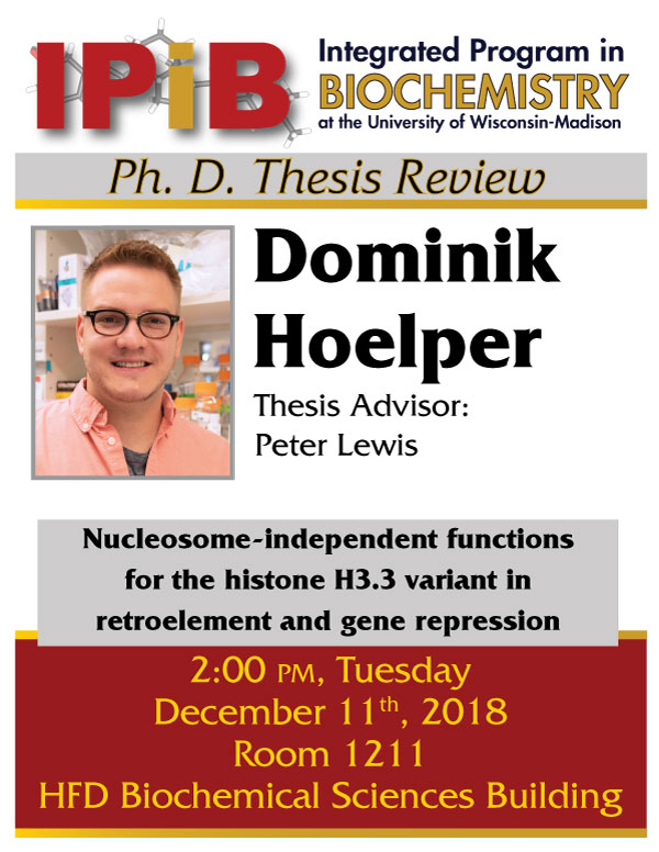 Hoelper Thesis Review poster