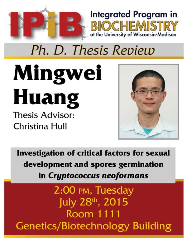 Huang Thesis Review flyer