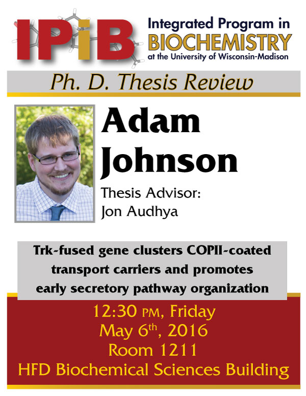 Flyer for Adma Johnson thesis review