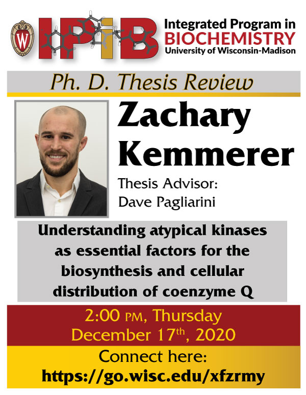 Image of Kemmerer Thesis Review poster