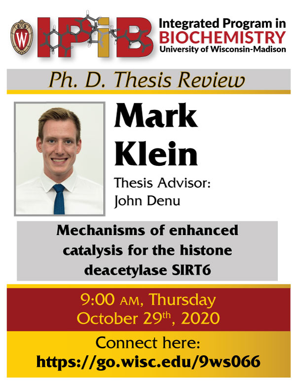 Poster for Mark Klein Thesis Review