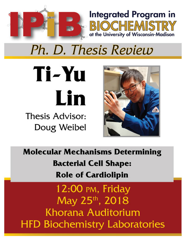 Poster for Lin Thesis Review