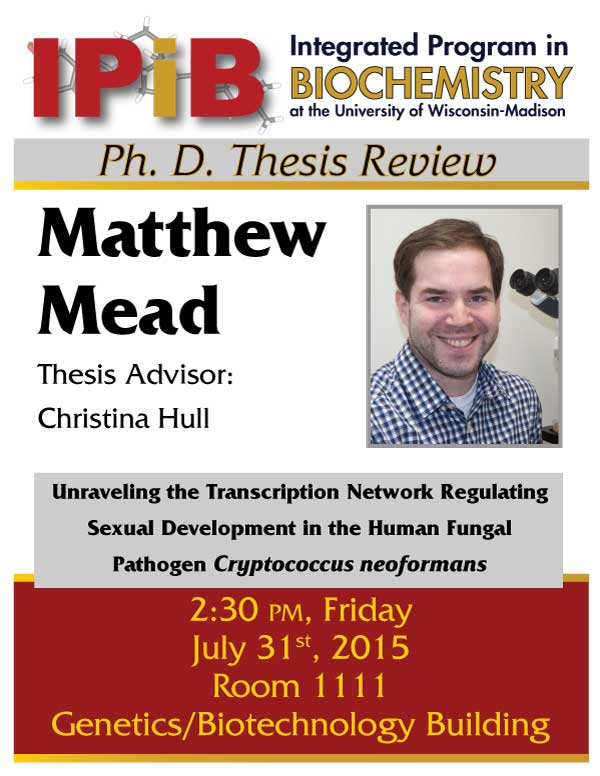 Mead Thesis Review flyer