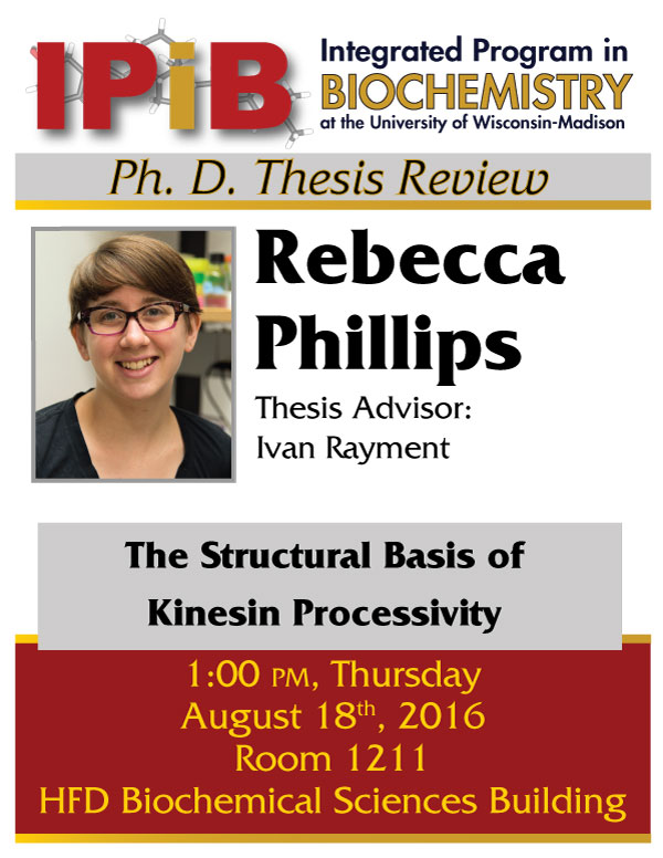 Promotional poster for Rebecca Phillips thesis review