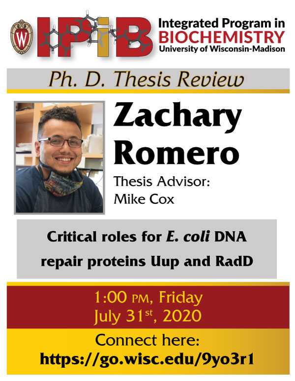 Zach Romero thesis review promotion