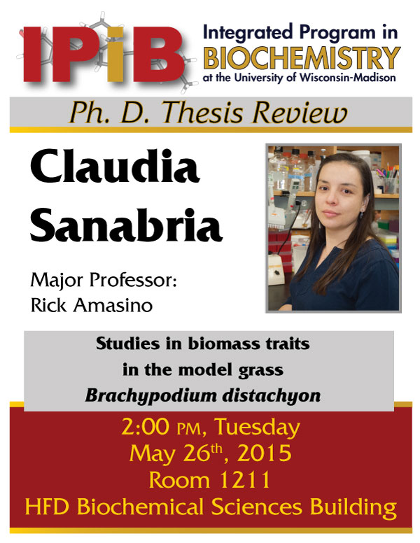 Studies in biomass traits in the model grass Brachypodium distachyon- Thesis Review