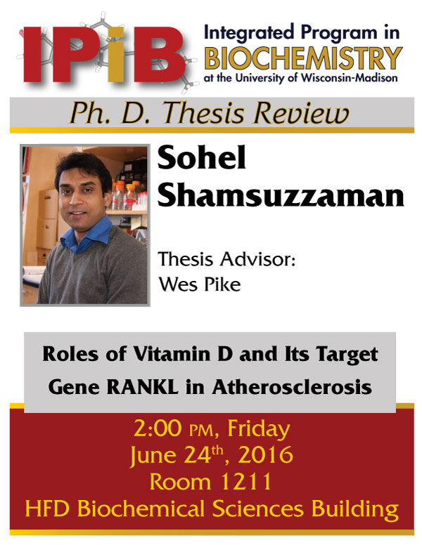 Poster to for Sohel Shamsuzzaman thesis review