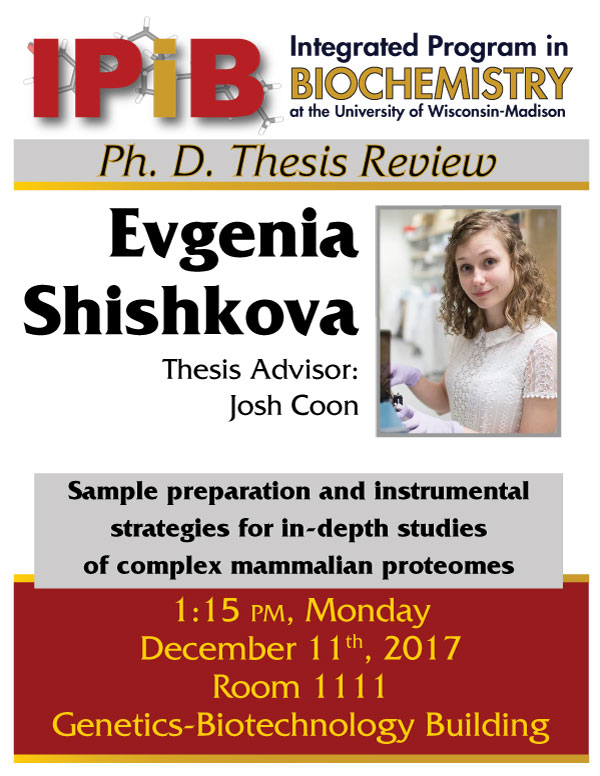 Promotional poster for Evgenia Shishkova thesis review