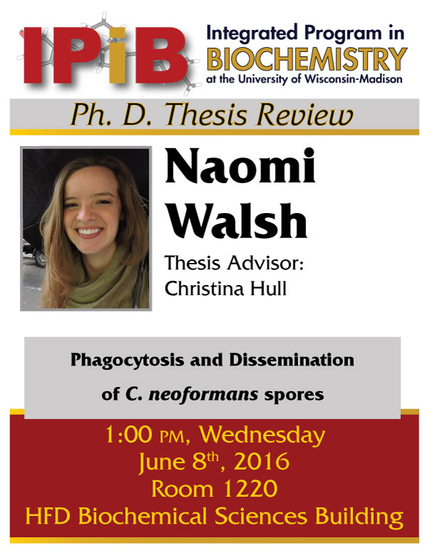Promo poster for Naomi Walsh thesis review