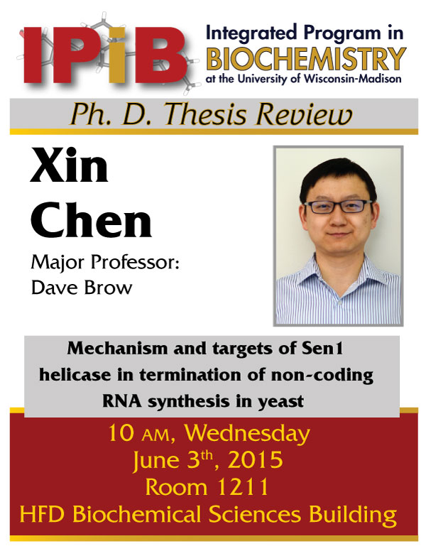 Xin Chen THesis Review