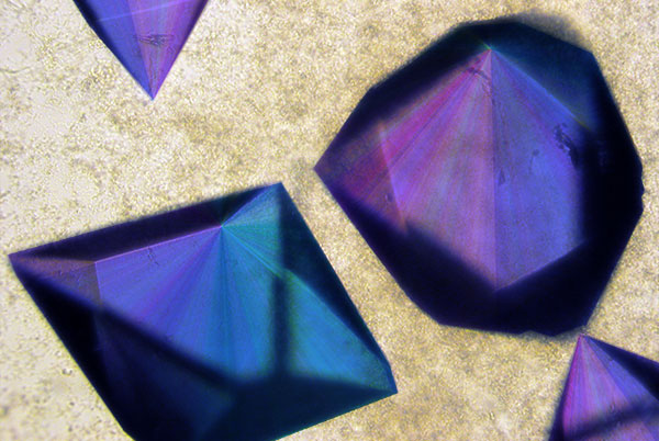 Photo of qdtf crystals