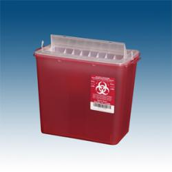 Photo of small sharps container