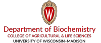 Official logo of the Department of Biochemistry