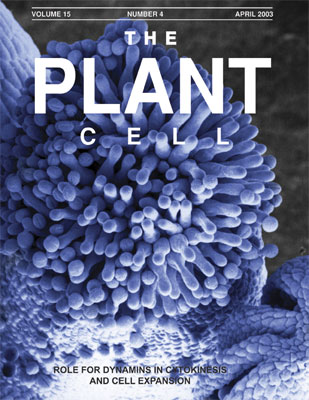 Photo of Plant Cell cover