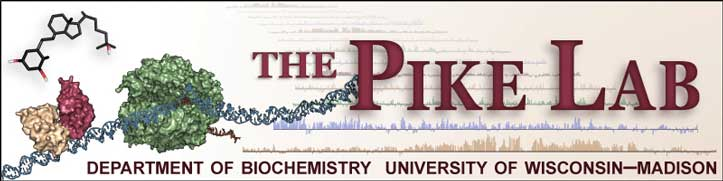 Pike Lab Logo