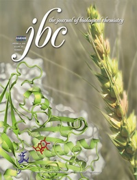 Image of 2008 Journal of Biological Chemistry cover