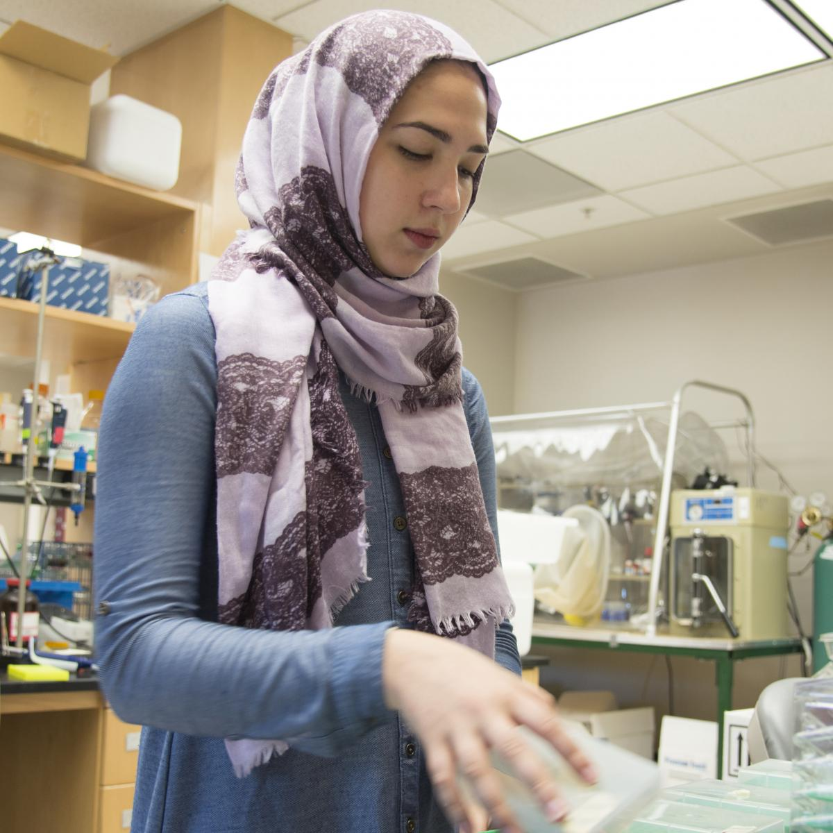 Jenna Amro, a high school student from Madison, has been an Youth  Apprentice in the lab of biochemistry professor and chair Brian Fox