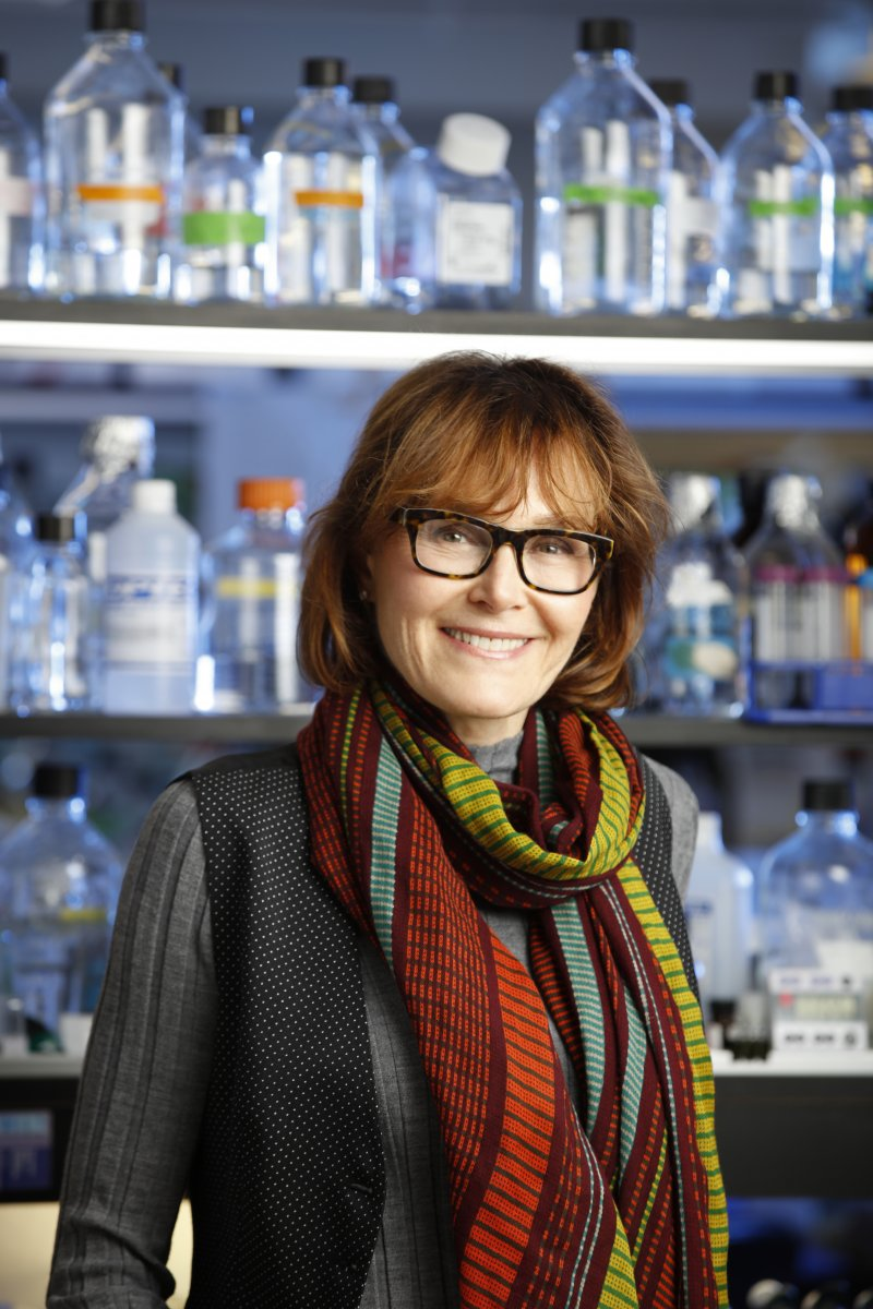Biochemistry Ph.D. alumni and professor at the University of Rochester Lynne Maquat