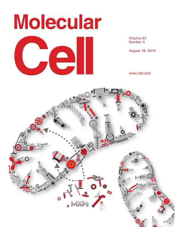 2016 Molecular Cell cover