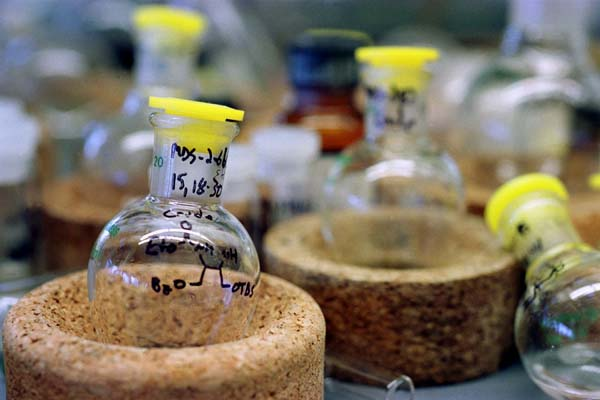 Photo of Chemical Vials
